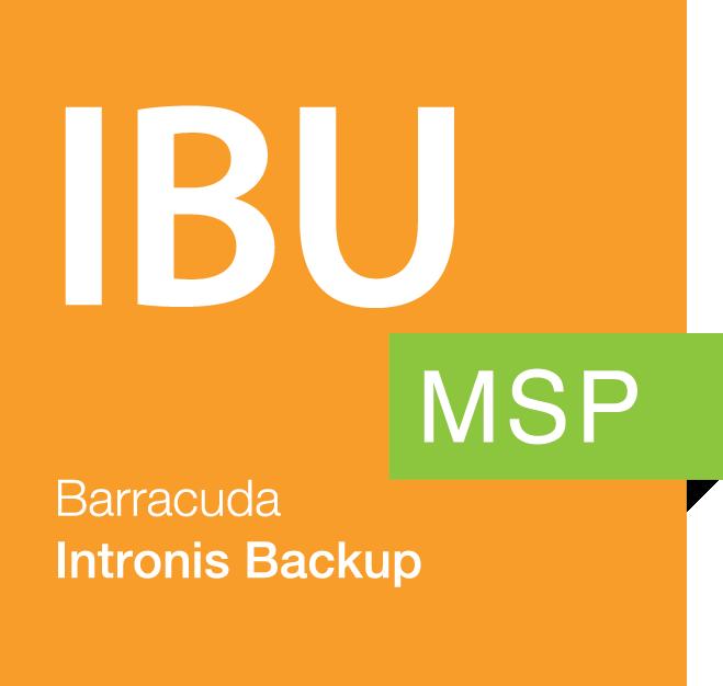 Intronis Backup